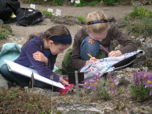 Kunst - Zeichnen im Botanischen Garten